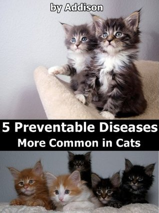 5 Preventable Diseases More Common in Cats Addison