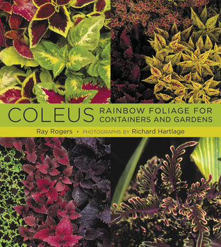 Coleus: Rainbow Foliage for Containers and Gardens  by  Ray  Rogers