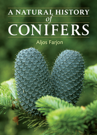 Bibliography of Conifers: 2nd Edition  by  Aljos Farjon