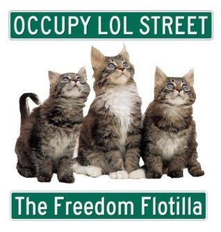 Occupy LOL Street: The Freedom Flotilla  by  Travis Haan