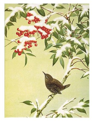 Bird on Berry Tree - American Museum of Natural History Boxed Holiday Half Notecards  by  American Museum of Natural History