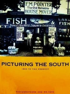 Picturing the South: 1860 to the Present  by  Ellen Dugan