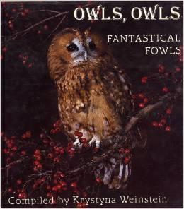 Owls, owls, fantastical fowls  by  Krystyna Weinstein