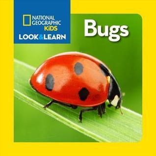Bugs  by  Eva Steele-Saccio