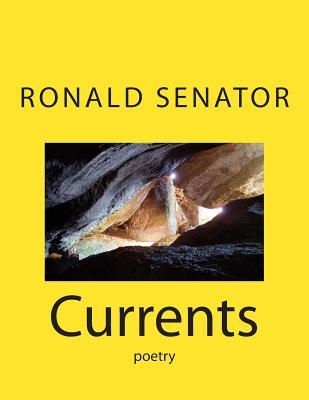 Cyberspace: Poems and Ballades Ronald Senator