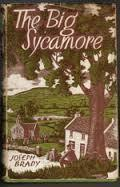 The Big Sycamore  by  Joseph Brady