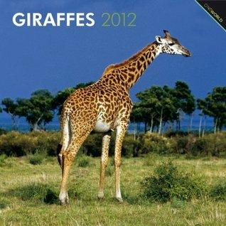 Giraffes 2012 Square 12X12 Wall Calendar NOT A BOOK