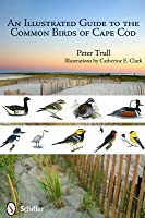 A Guide to the Common Birds of Cape Cod  by  Peter Trull