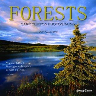 2014 Forests Wall Calendar NOT A BOOK