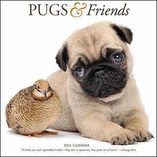 Pugs & Friends 2014 Calendar NOT A BOOK