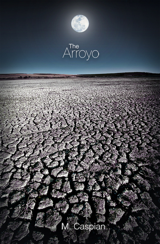 The Arroyo  by  M. Caspian