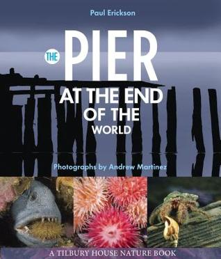 The Pier at the End of the World  by  Paul Erickson