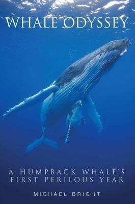 Whale Odyssey: A Humpback Whales First Perilous Year  by  Michael Bright