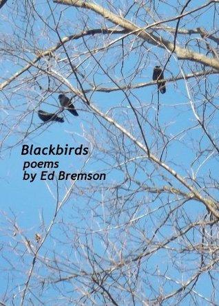 Blackbirds  by  Ed Bremson