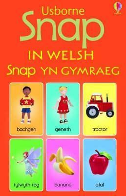 Snap In Welsh  by  Jo Litchfield