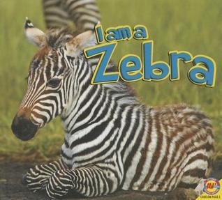 Zebra Aaron Carr