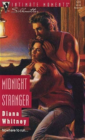 Midnight Stranger (Still Married, #2) Diana K. Whitney