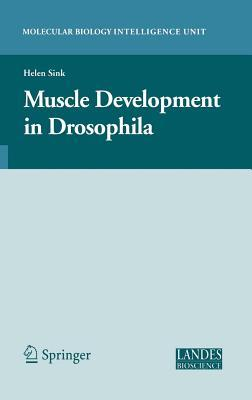 Muscle Development in Drosophila. Molecular Biology Intellegence Unit. Helen Sink