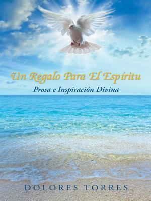 Un Regalo Para El Espiritu: Prosa E Inspiracion Divina Dolores Torres