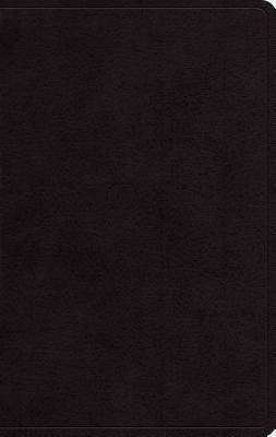 Large Print Personal Size Bible-ESV Anonymous