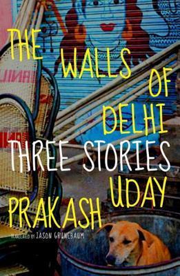 Walls of Delhi  by  Uday Prakash