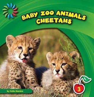 Cheetahs  by  Katie Marsico