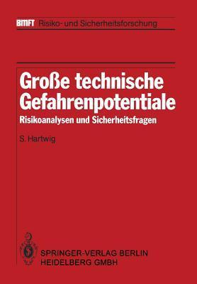 Grosse Technische Gefahrenpotentiale: Risikoanalysen Und Sicherheitsfragen  by  S Hartwig