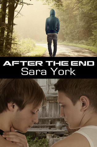 After The End Sara York