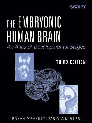 Embryonic Human Brain: An Atlas of Developmental Stages  by  Fabiola Ller