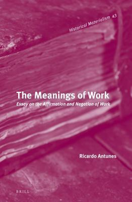 Meanings of Work: Essay on the Affirmation and Negation of Work  by  Ricardo  Antunes