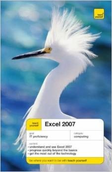 Excel 2007  by  Moira Stephen