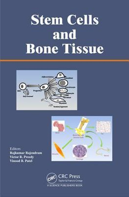Stem Cells and Bone Tissue Rajkumar Rajendram
