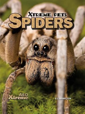 Spiders  by  Sue L. Hamilton