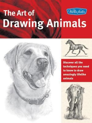 Art of Drawing Animals: Discover All the Techniques You Need to Know to Draw Amazingly Lifelike Animals  by  Patricia Getha