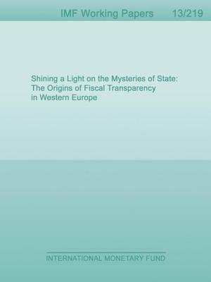 Shining a Light on the Mysteries of State: The Origins of Fiscal Transparency in Western Europe  by  Timothy Irwin