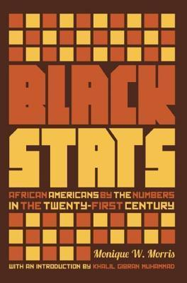 Black STATS: African Americans  by  the Numbers in the Twenty-First Century by Monique Morris