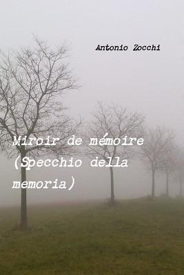 Miroir de Memoire  by  Antonio Zocchi