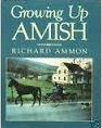 Growing Up Amish Richard Ammon