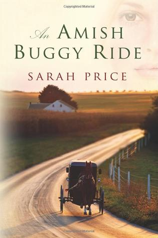 Amish Buggy Ride  by  Sarah Price