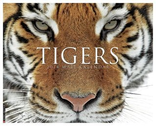 Tigers 2014 Wall Calendar NOT A BOOK