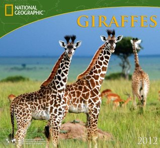 2012 Giraffes - National Geographic Wall calendar Zebra Publishing Corp.