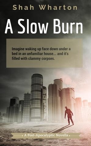 A Slow Burn: A Post-Apocalyptic Horror Shah Wharton