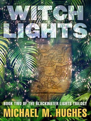 Witch Lights: Book Two of the Blackwater Lights Trilogy Michael M. Hughes