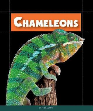 Chameleons Peter Murray