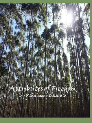 The Attributes Of Freedom In South Africa  by  Nthabiseng Zikalala