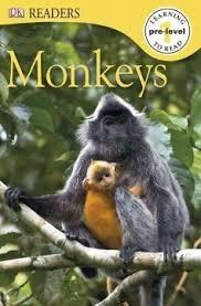 Monkeys  by  Deborah Lock