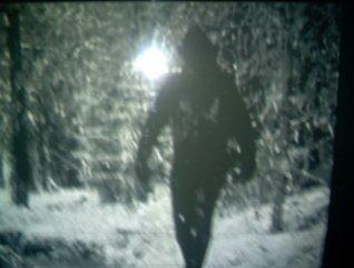 The Snow Walker Keith Luethke