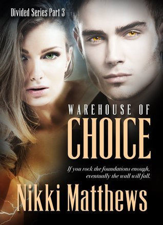 Warehouse of Choice (Divided, #3) Nikki Matthews