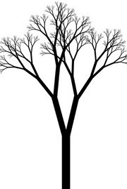 Branches on the Tree of Time Alexander Wales