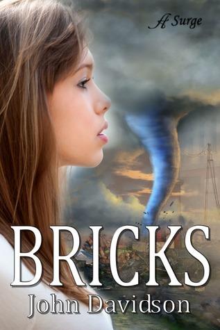 Bricks John    Davidson